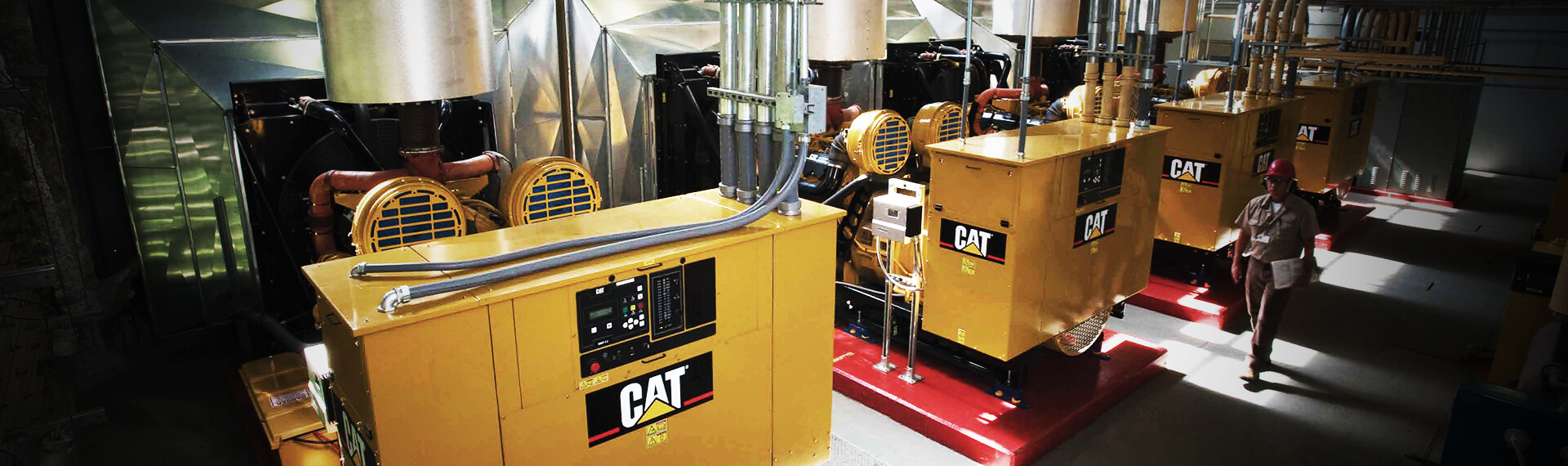 Whayne Walker Cat | Power Systems -Power Equipment -Generators